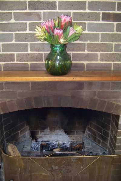 Proteas above the fire place