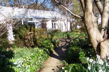 Down the garden path at the back of the studio